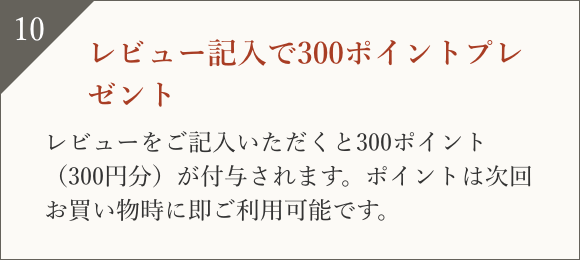 レビュー記入で300ポイントプレゼント